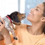 stress verminderen huisdier